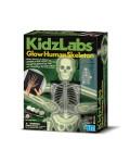 Juego Kidzlabs esqueleto humano brillante - 4M